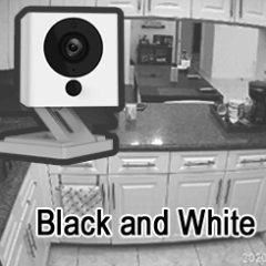 Why is my Wyze Cam black and white