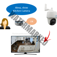 How to Add Reolink Camera to Alexa