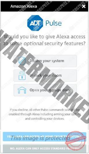 Allow Alexa to Contro the ADT Security Features